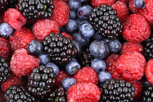 Frugal Living Tips – Berries And Nylons